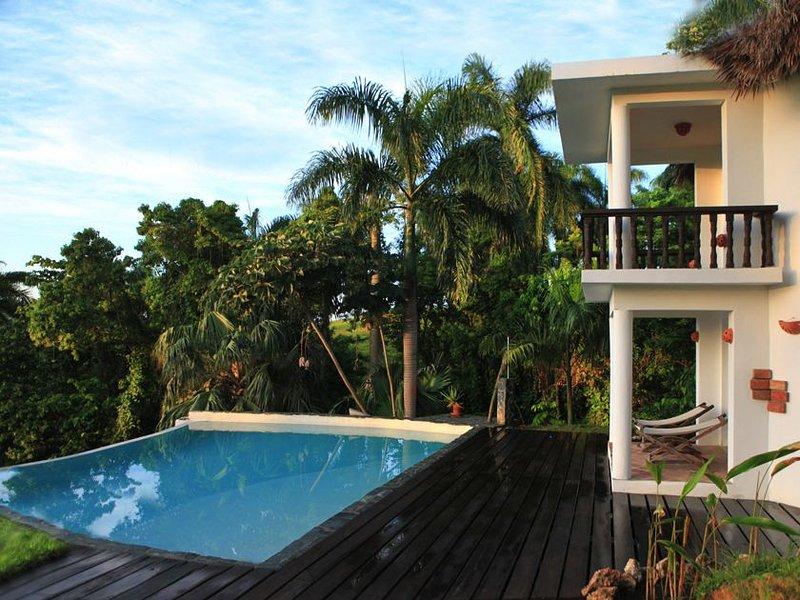 La piscina y su casa de huéspedes.