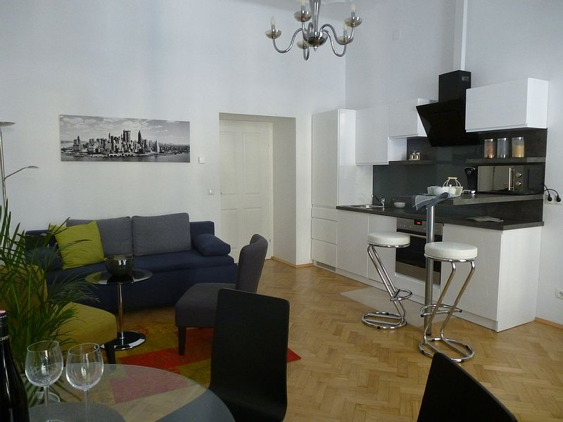 Charming Viennese Apartment near City Centre – semesterbostad i Wien