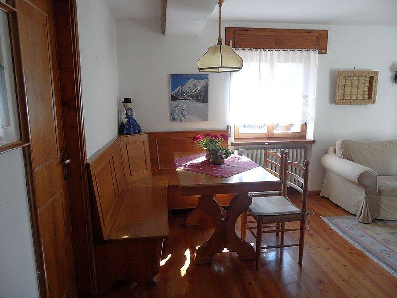 Apartment with garden near Cortina, holiday rental in Tai di Cadore