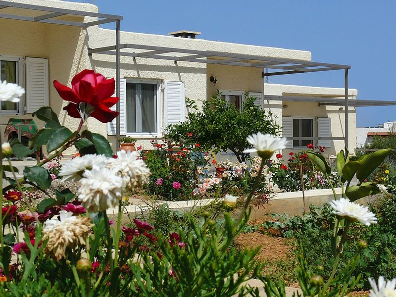 Athos villa with mountain and sea view, holiday rental in Tripitos