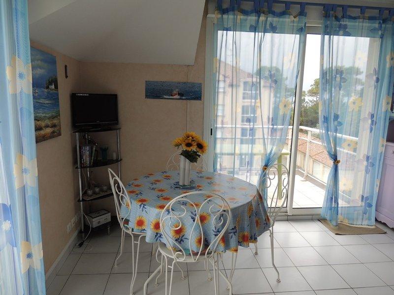Vue mer ce appartement de charme a 50 m de la plage sur la Côte de Jade, holiday rental in Saint-Brevin-les-Pins