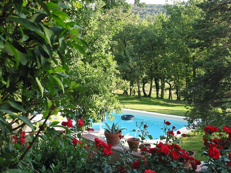 PROVENCE: Mas amongst oak trees with a pool, in the Luberon., holiday rental in Murs