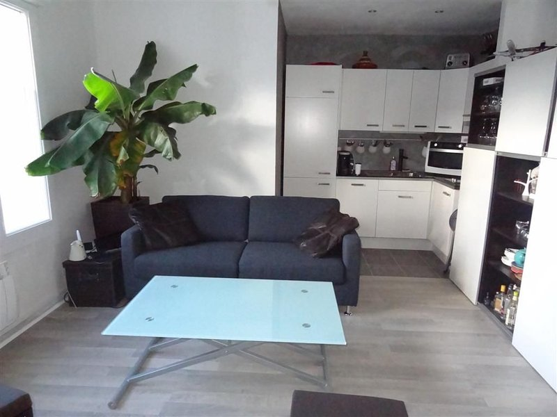 Grand F2 Centre Ville - 2/4 pers,TV,Lave Vaisselle / Linge, holiday rental in Le Grand-Quevilly