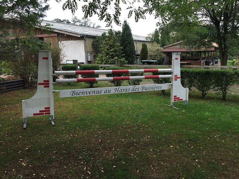 Gîte au coeur d'un centre équestre Alsacien, holiday rental in Rheinau