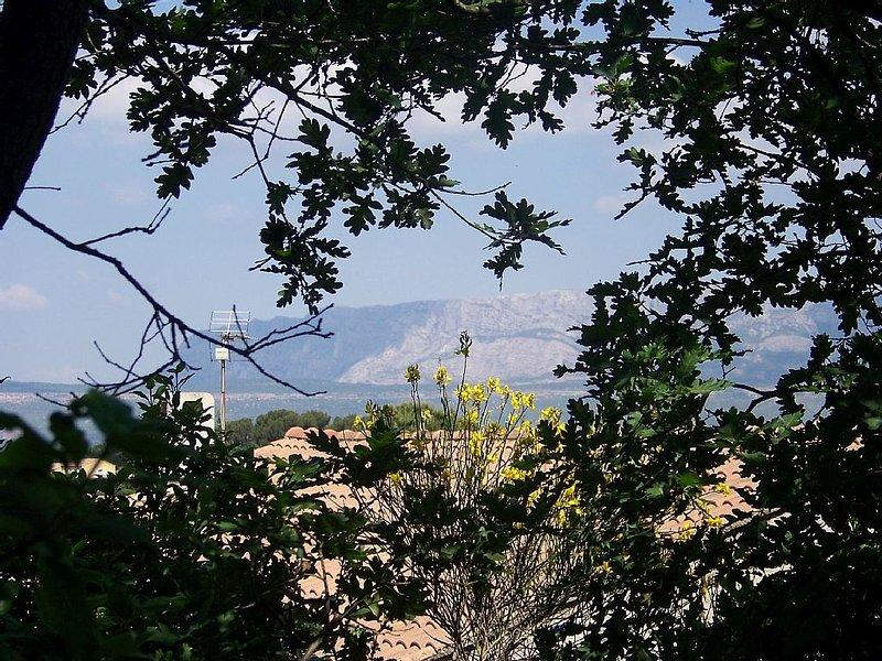Dans village de Provence, 2 logements rustiques dans clos arbo, location de vacances à Pourrieres