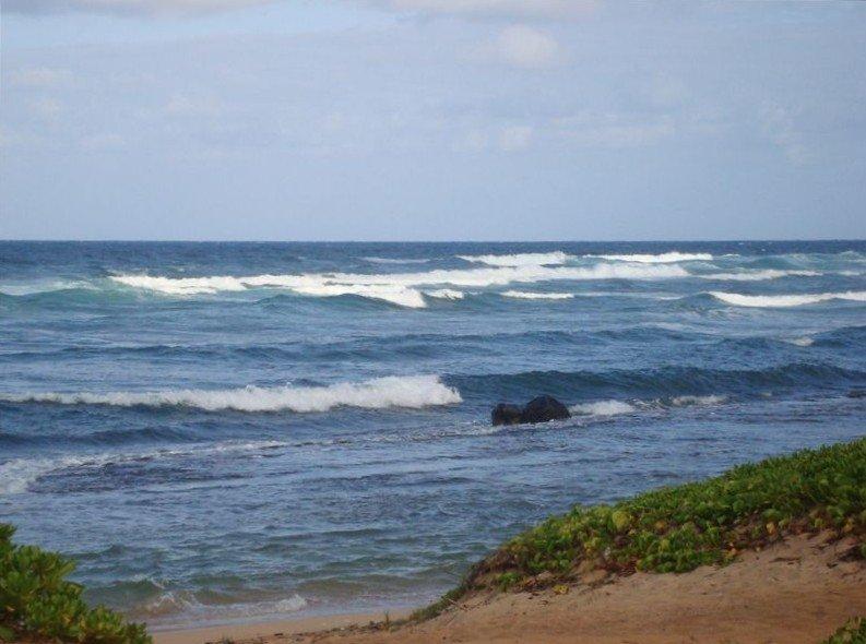 MOST MAGNIFICENT KAUAI OCEAN VIEWS, Oceanfront at Kauai Beach Villas, alquiler de vacaciones en Lihue