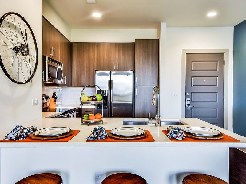 New kitchen with contemporary dark cabinetry and stainless steel appliances.