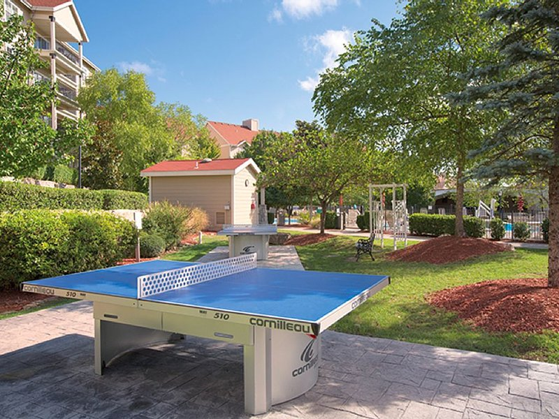 Play a game of outdoor ping pong