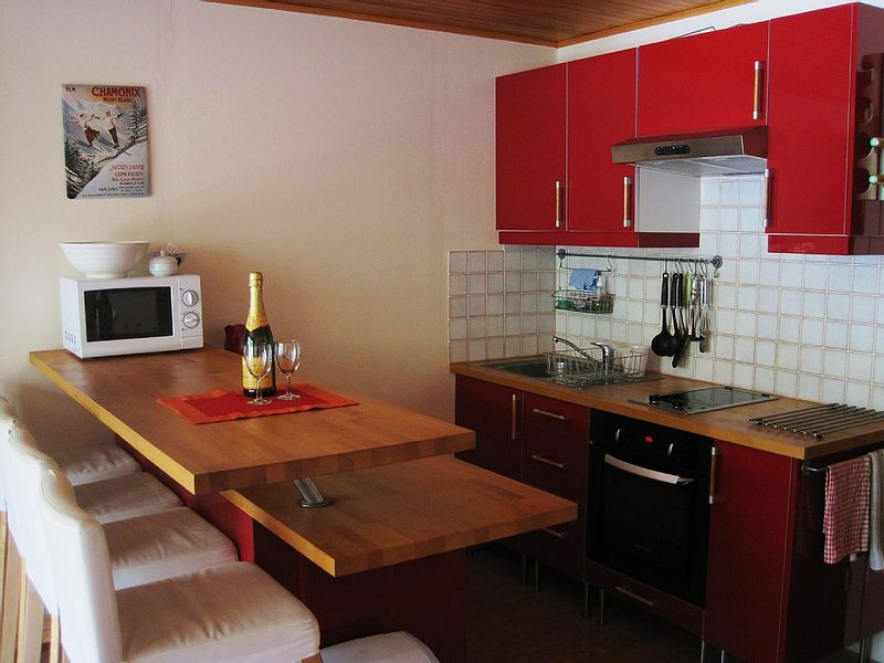 Modern, spacious and well equipped family ski apartment, location de vacances à Isère