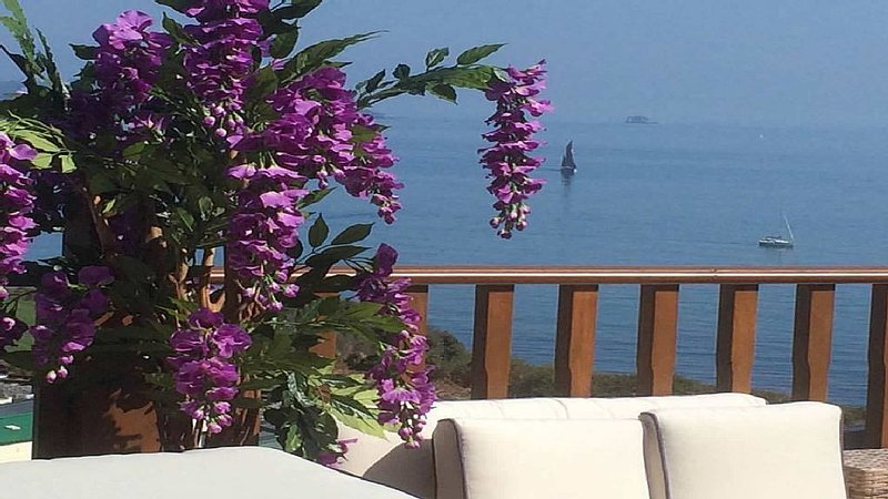 Luxury Holiday Lodge with stunning views over Torbay, location de vacances à Paignton