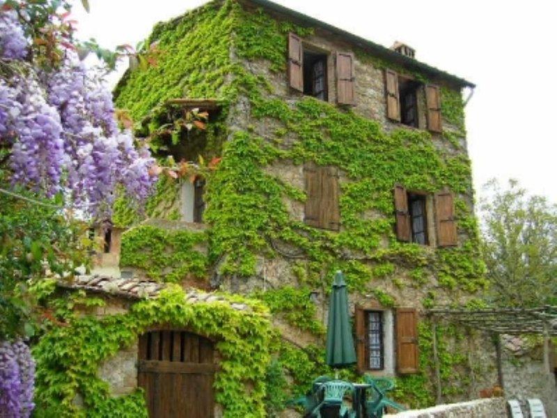 Casa con giardino e piscina, Ferienwohnung in Sovicille