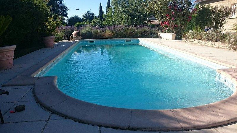 piscine le matin vue du transat
