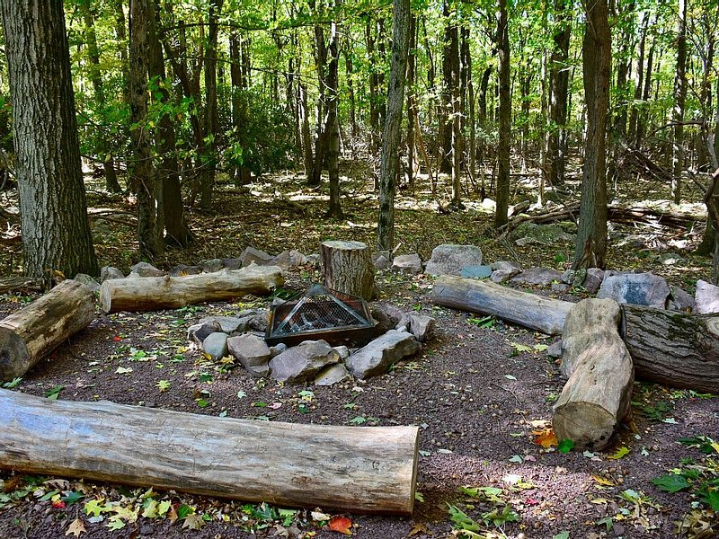 Rustic fire pit area backing up to the forest- get cozy with some smores :)