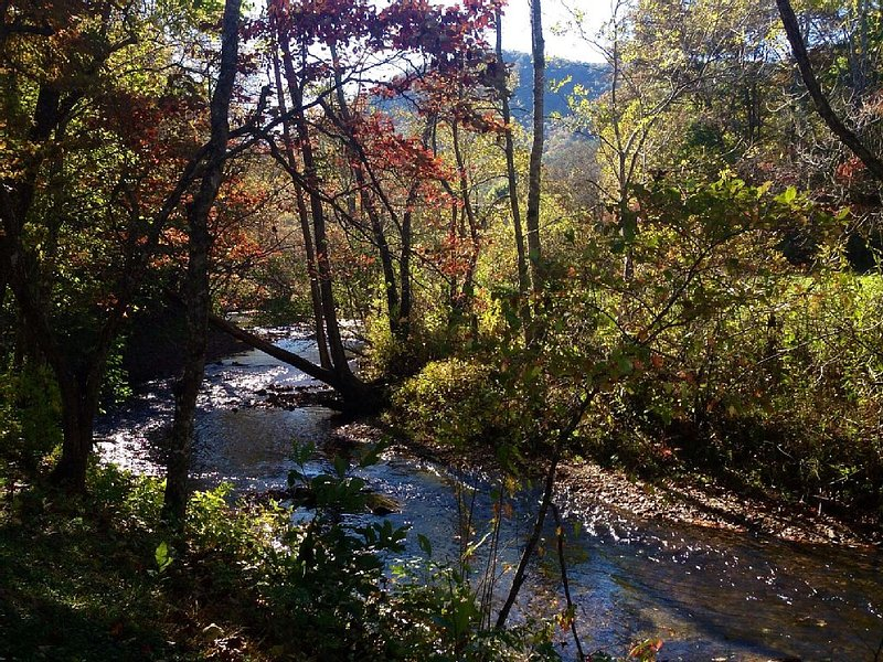 Smoky Mountain Creek Front Privacy, holiday rental in McDonald