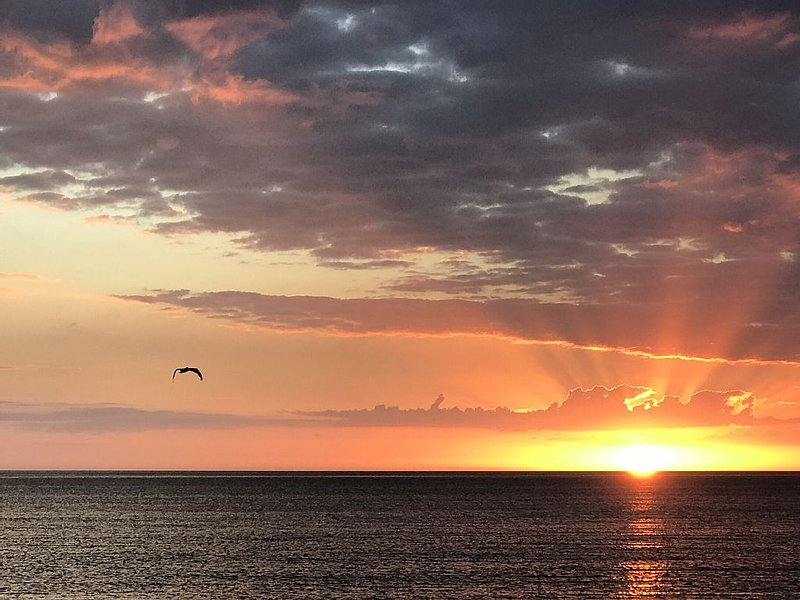 Beach Side of West Gulf Drive, Private Beach Access, Beautiful Sunsets!, location de vacances à Île de Sanibel