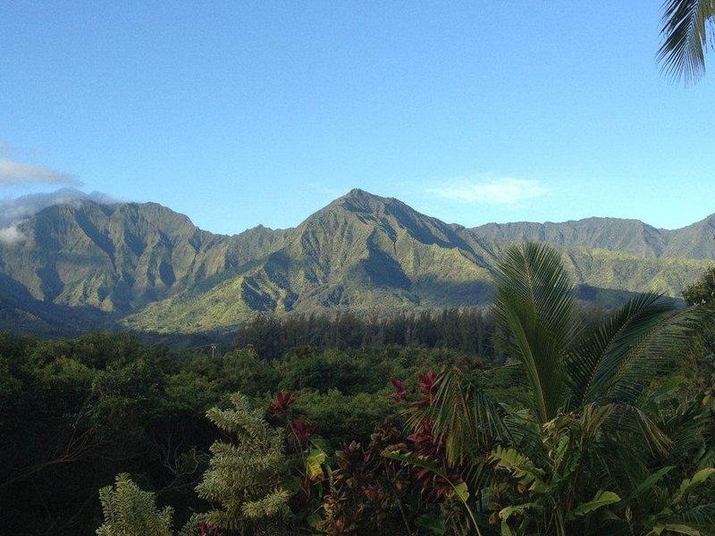 Magnificent Mountain Views!  Spacious Family Home-Sleeps 8, vacation rental in Princeville