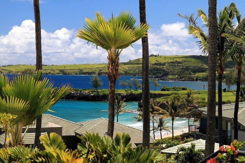 Kapalua Bay Villa Sweeping Ocean Views!, vacation rental in Kapalua