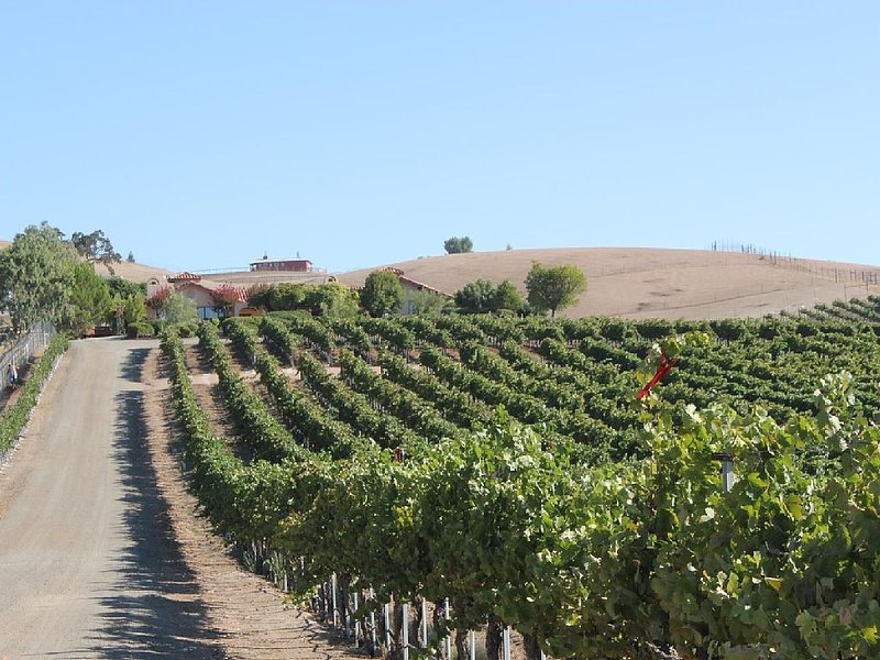 Views in the Midst of Vines--Solitude with Hacienda Style, casa vacanza a Paso Robles