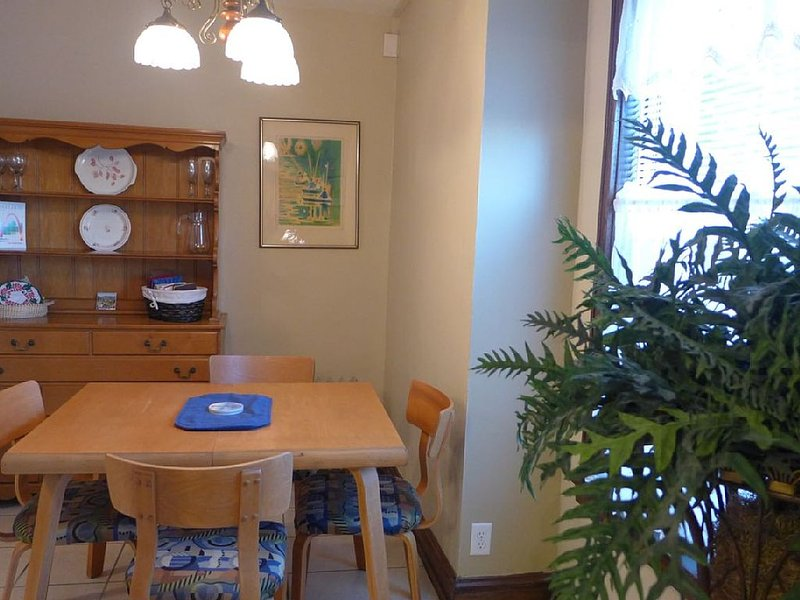 Grand Center: Lovingly Furnished Studio Across From SLU, holiday rental in Saint Louis