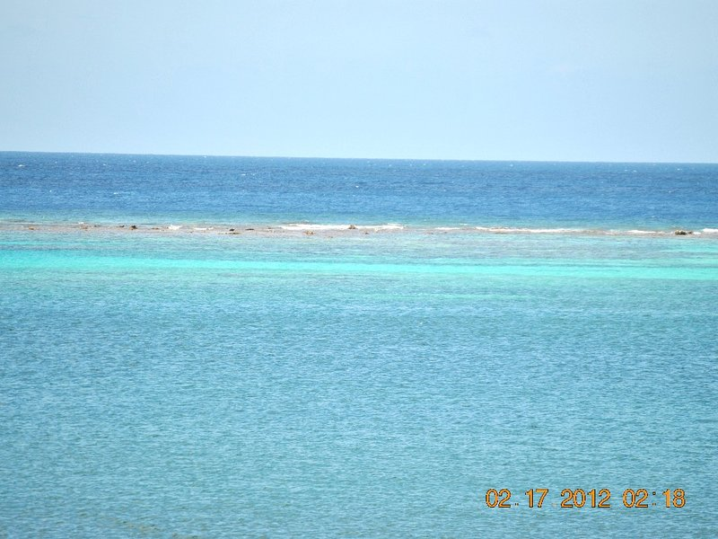 View of reef from decks, best snorkeling/diving/fishing anywhere