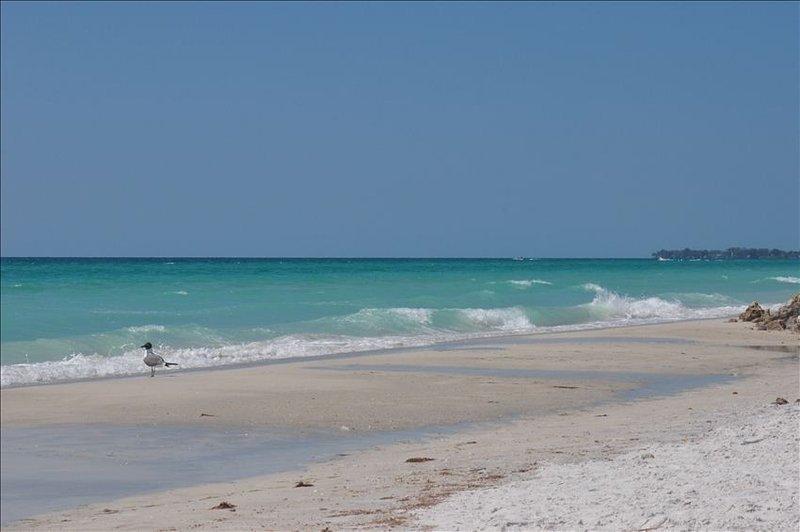 IMG Academies Golf Course Villa,  7 Miles to Beach, holiday rental in Bradenton