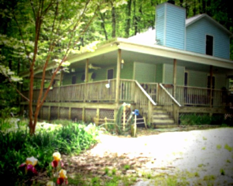 Available  Christmas, vacation rental in Rosman