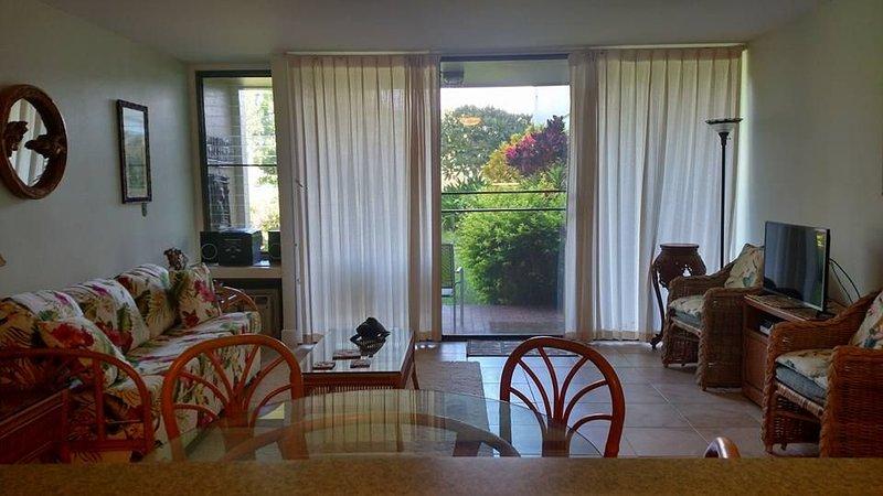 Living Area - Living Room. Window AC