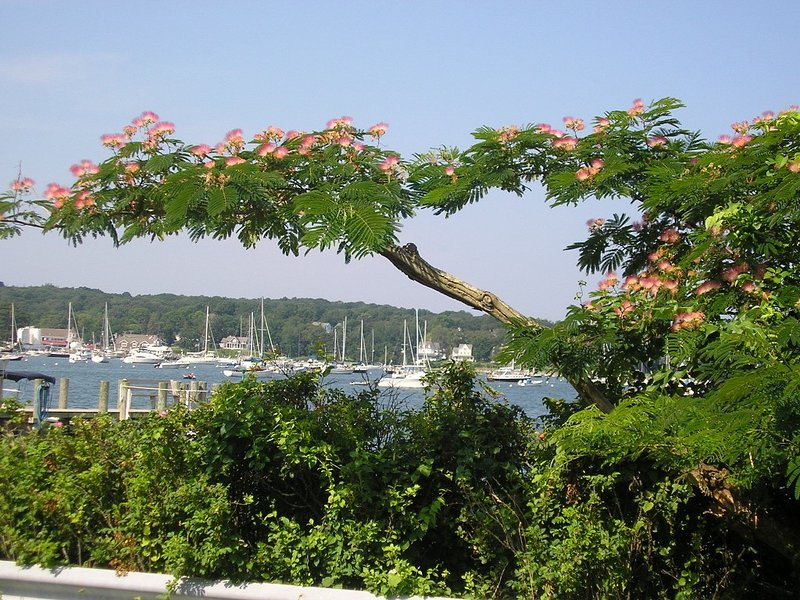 Beautiful Secluded Family Home on Shelter Island., vacation rental in Shelter Island