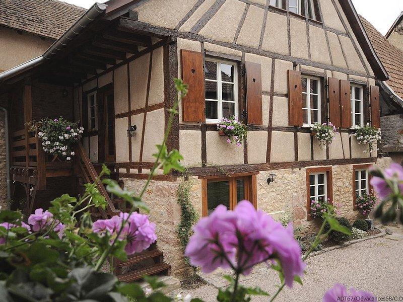 Maison de charme au plein coeur de la route des vins avec espaces verts, holiday rental in Bergheim