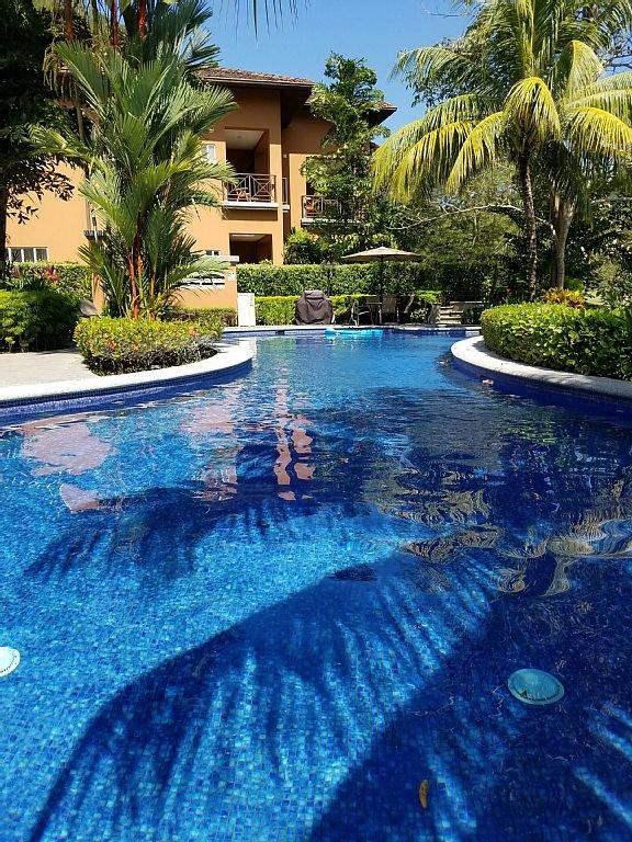 Una de las seis piscinas de Veranda. Ubicado directamente detrás de nuestro condominio.