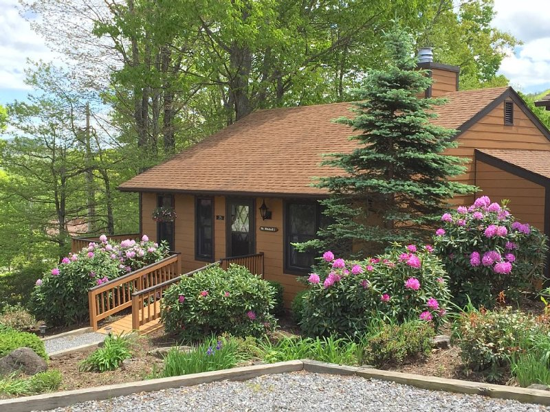 Peace and Serenity on the Mountain!, holiday rental in Burnsville
