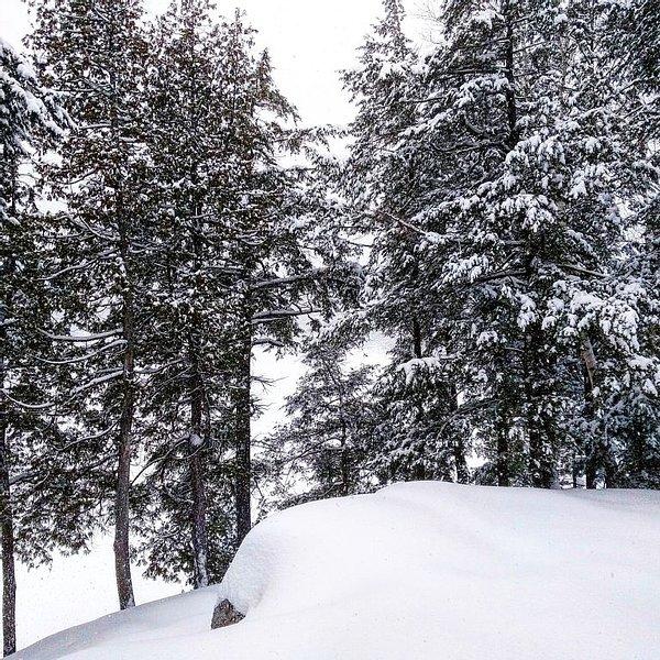 view of lake Winter