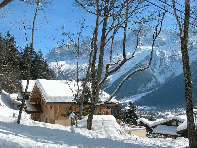 south facing apartment on the ground floor in small cottage front chain MT WHITE, holiday rental in Les Houches