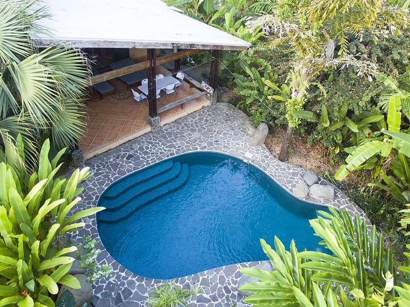 Enjoy the gorgeous back yard with refreshing pool and exotic flower garden!