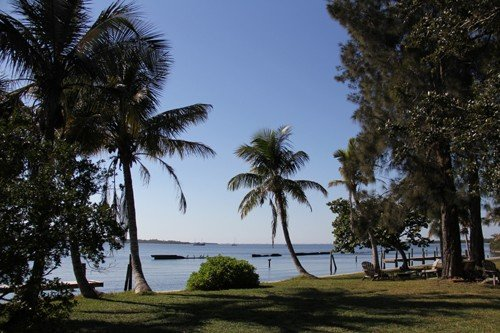'Snead Island Tree House' Waterfront Apartment on 2 Acre Lot, alquiler de vacaciones en Terra Ceia