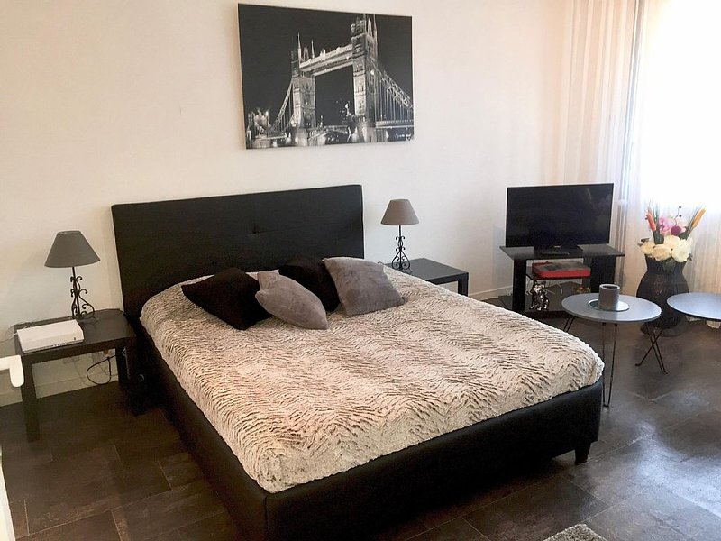 beautiful T1 30 m2, gated, near downtown, private parking. Wireless, vacation rental in Thonon-les-Bains