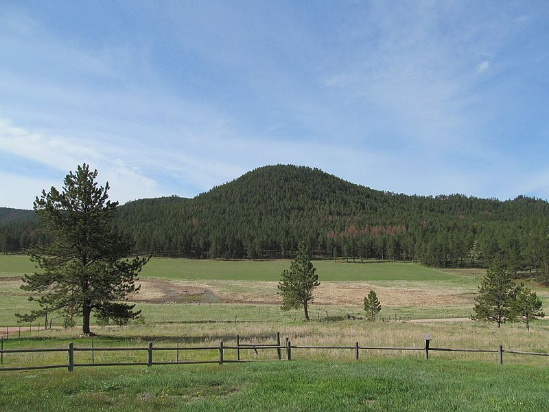 Classic Southern Black Hills -Winding Roads, Wildlife, Open Vistas, Star-Gazing, holiday rental in Custer