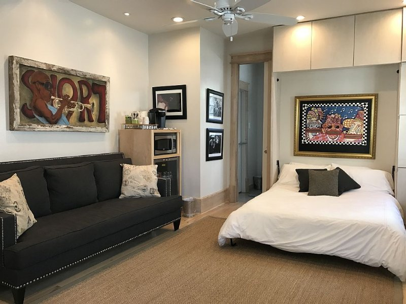 Uptown St Charles Ave Retreat  newly renovated studio w/pool on streetcar route, holiday rental in New Orleans