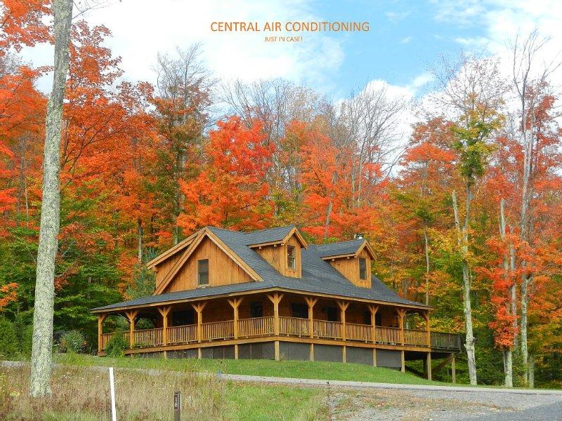 AUTHENTIC LOG CABIN--11 Acre Lake, Central AC, Hot tub, WiFi, aluguéis de temporada em Vale do Canaã