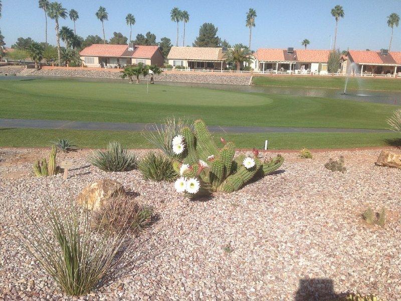 9th green of Sunbird Golf Resort