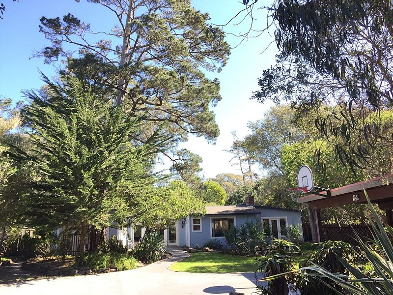 Asilomar Ocean Retreat - half acre near ocean, holiday rental in Monterey County