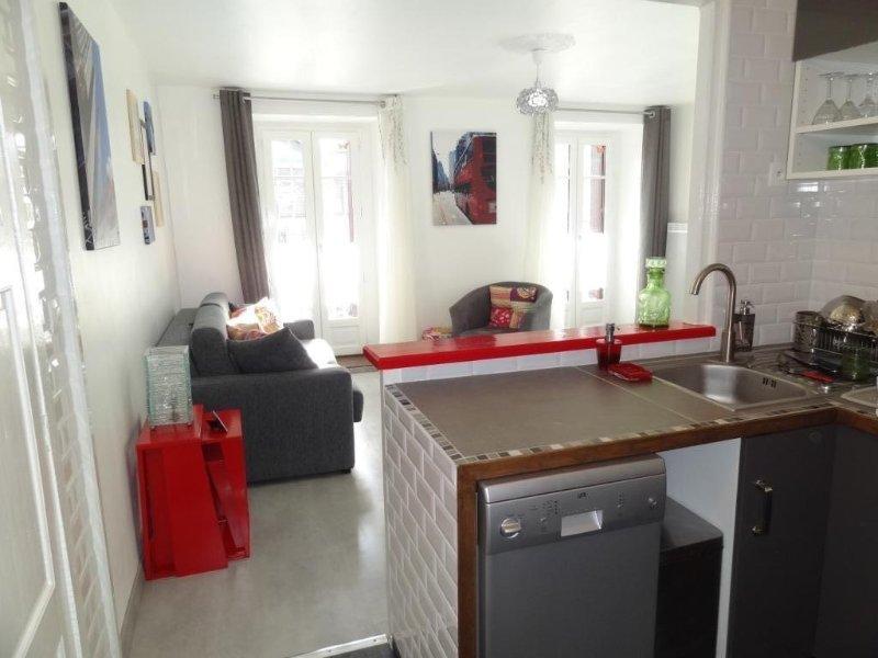 Magnifique T2 tout équipé, 43 m2, coeur historique de Luchon, 2 personnes, holiday rental in Bagneres-de-Luchon