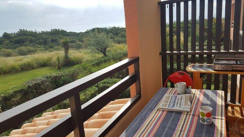 Studio cabine 4 pers, dans résidence calme avec piscine, à 50m de la plage, alquiler de vacaciones en Saint-Cyprien