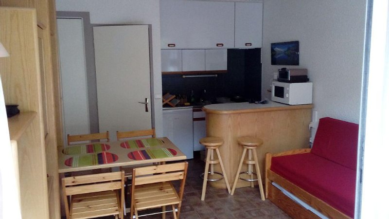 STUDIO 4 pers, near the village center and télélé, vacation rental in Saint-Lary-Soulan
