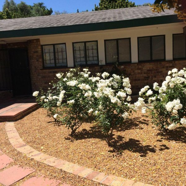 Stellenbosch Town Centre  - Large 4 bed,  Very Private Garden with 10m pool, holiday rental in Elsenburg