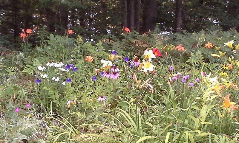Enjoy our gardens!