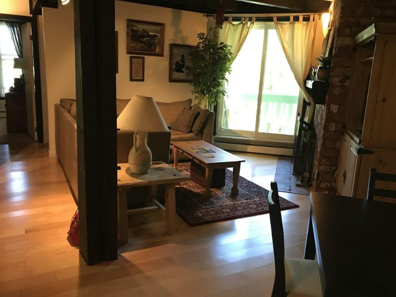 A Get Away Condo, 2 Bedroom, King & Full Size Bunk Bed W Trundle, location de vacances à Silverthorne