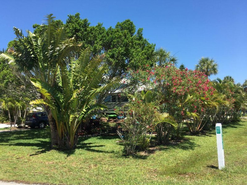 Palm Isle Retreat with decks, floral gardens, shade, large yard, quiet street
