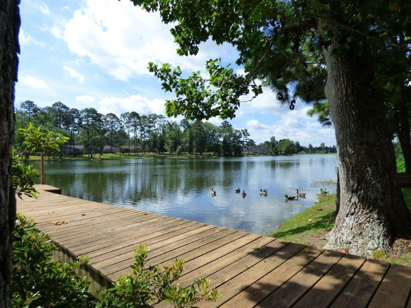 You Will Love This Lake Front Home, Fish from the Dock., alquiler vacacional en Thomasville