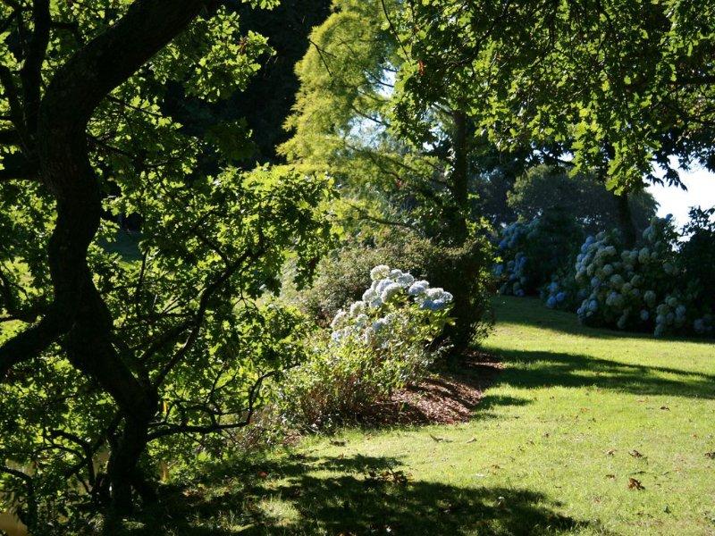 Le parc du cruguil : en se promenant autour de l'étang